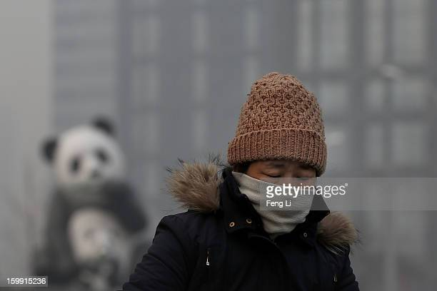 A woman wearing the scarf ride a bicycle through a panda sculpture during severe pollution on January 23 2013 in Beijing China The air quality in...
