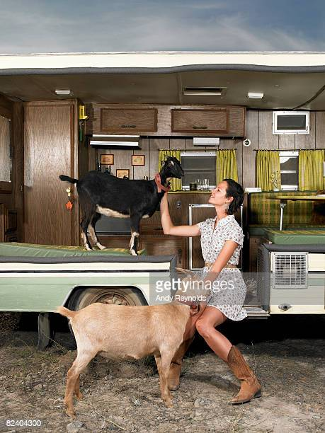 woman with 2 goats in trailer
