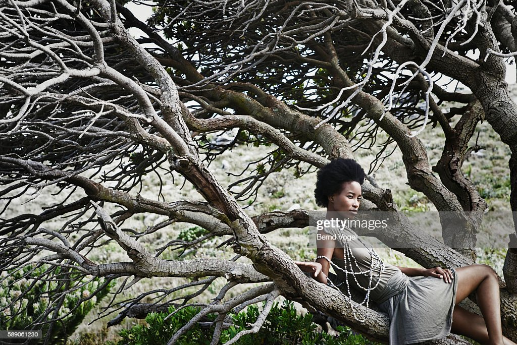 woman with afro sitting in tree by beach stock photo getty images