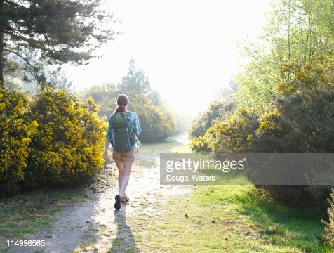 Woman with back pack walking through woodland. : Stock Photo