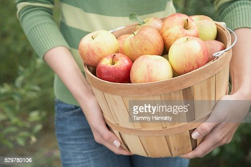 Woman with basket of apples : Stockfoto