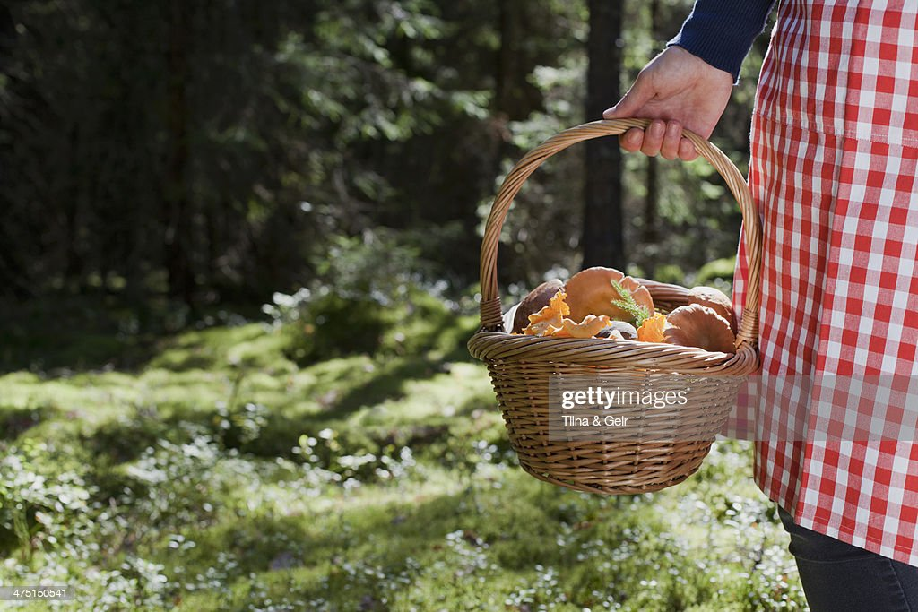 Woman with basket of mushrooms in forest