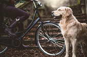 Beautiful young woman with bike and dog on autumn day outdoors.