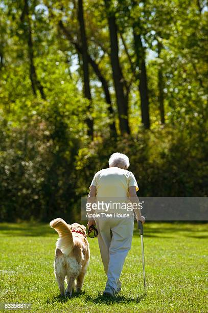 Woman with cane walking with Golden Retriever