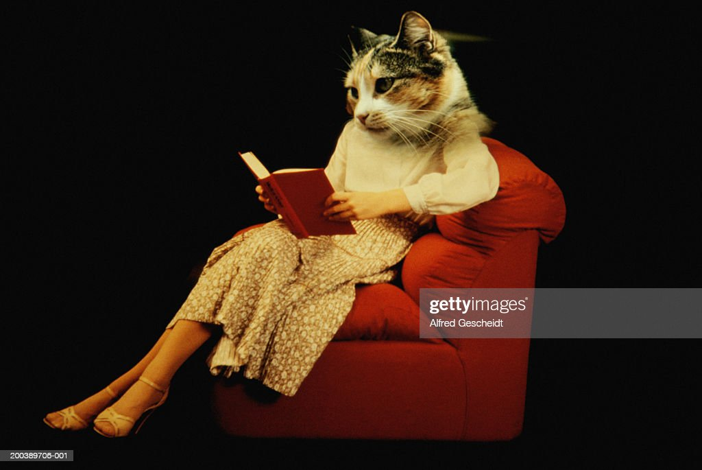 Woman with cat head, reading book on armchair