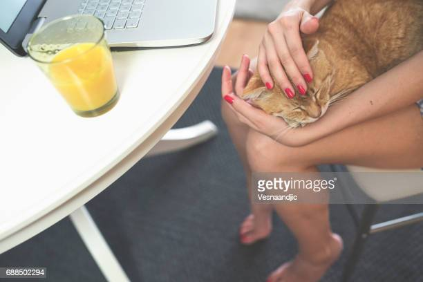 Woman with cat working at home