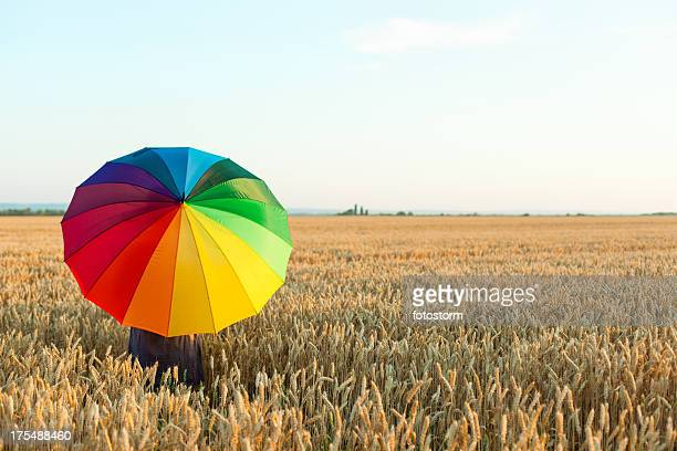 Woman with colorful umbrella in wheat field