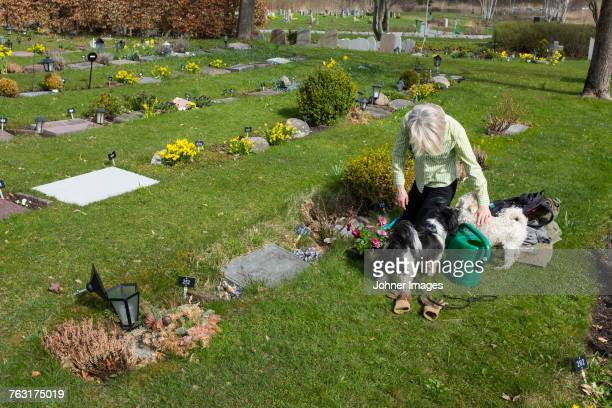 Woman with dogs in pet cemetery