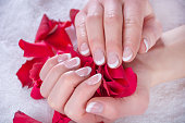 Girl with french nails polish manicure holding red rose petals in beauty salon. Beauty and Manicure concept. Close up, selective focus