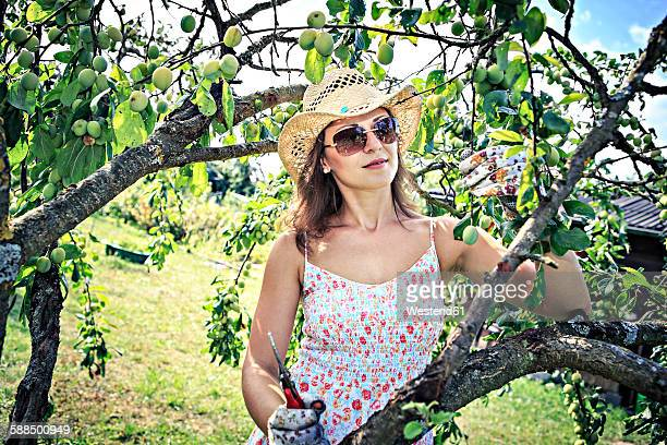 Woman with gardening gloves and pruner working in the garden
