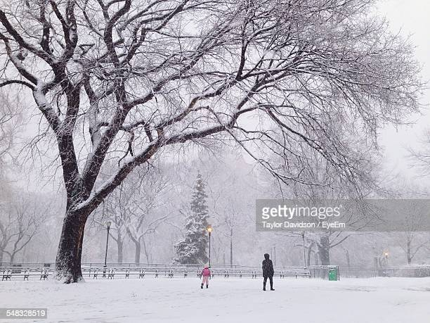 Woman With His Son Walking In Snowing Park