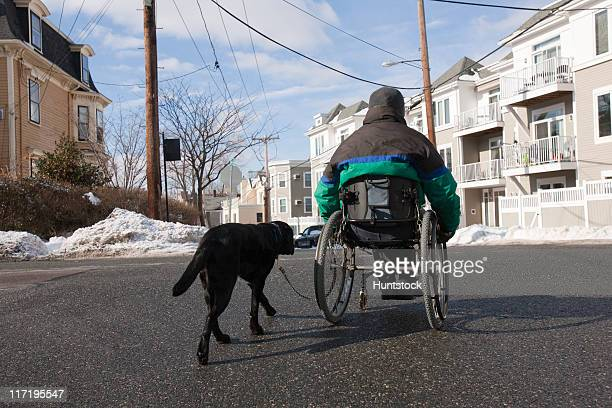 Woman with multiple sclerosis in a wheelchair with a service dog crossing a street in winter
