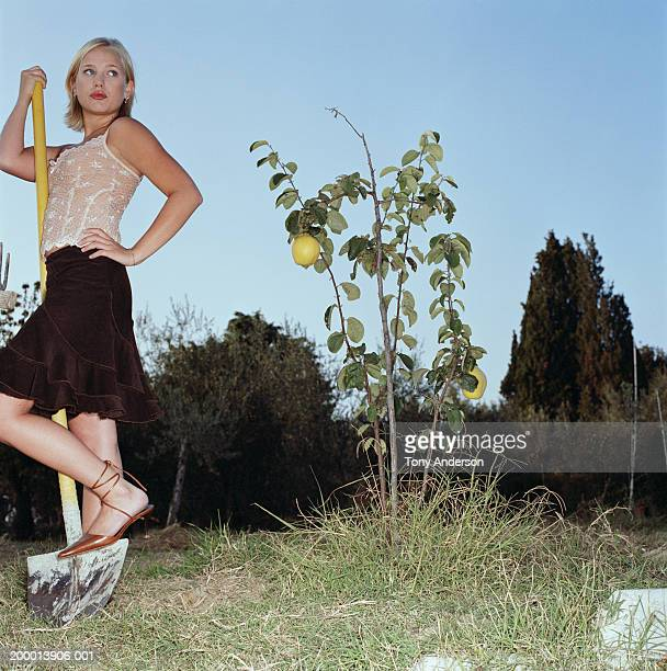 Woman with shovel standing near lemon tree plant