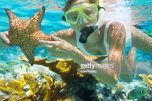 woman with starfish snorkeling in the Caribbean