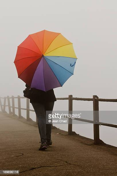 Woman with umbrella in fog