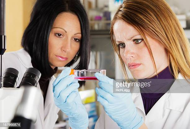 Frau Arbeiter in einem Labor
