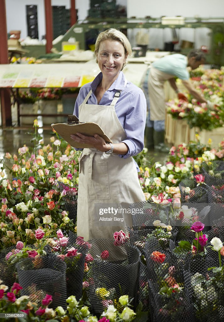 Woman working amongst roses : Stock Photo