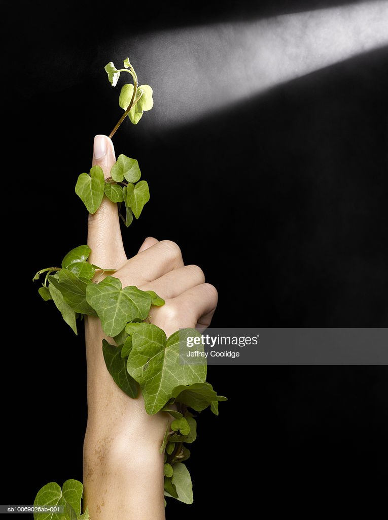 Woman's arm wrapped in ivy, with spotlight on fingertip, studio shot : Stock Photo