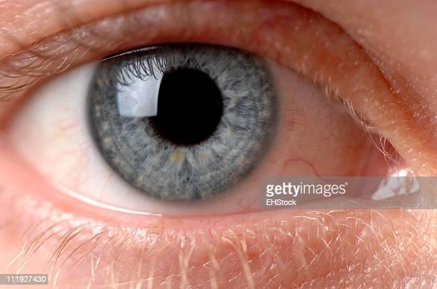 女性の青い目のクローズアップ