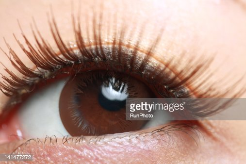 woman's eye wearing false eyelashes,close-up : ストックフォト