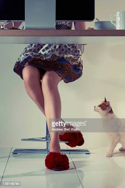 woman's feet in slippers & her cat beneath a desk