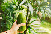 Woman's hand holding a bottle with green juice, nature background. Healthy eating, detoxing, juicing, fasting, body cleancing concept