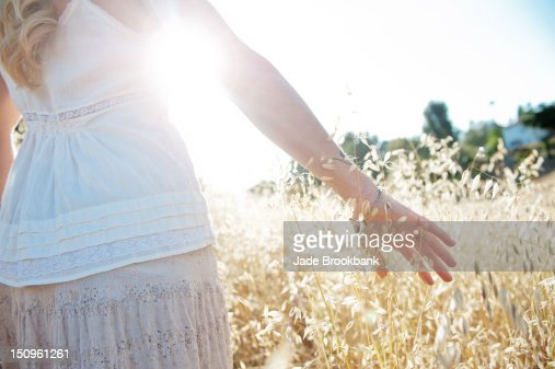 Woman's hand through field : Stock Photo