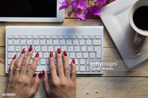 Woman's hands at the tablet keyboard