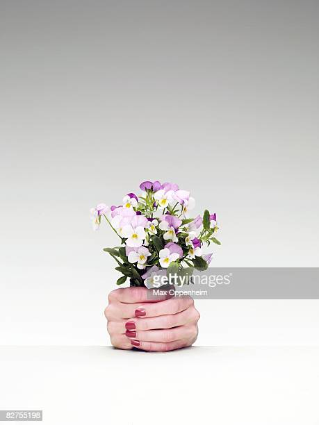 woman's hands used as a flower pot