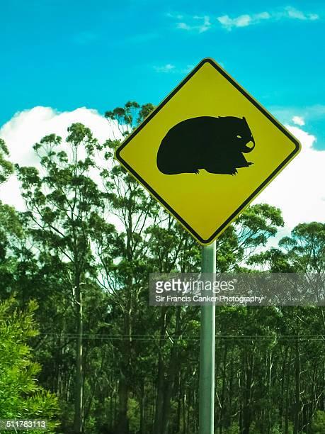 Wombat road sign in Tasmania