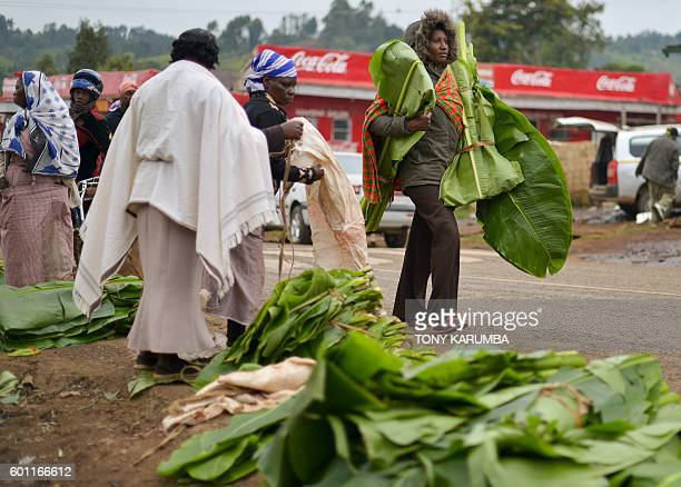 Women carries freshly cut banana leaves used to package khat for transportation at a local open air market at Maua in Meru county on September 9 2016...