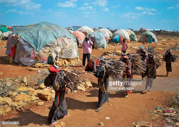 TOPSHOT Women carry firewood on March 15 2017 as they walk back to a makeshift camp on the outskirts of Baidoa in the southwestern Bay region of...