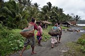 Women carry wood in the town of Kerema Papua New Guinea on September 5 2014 AFP PHOTO / ARIS MESSINIS
