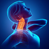 3d Illustration of Women Feeling the Neck Pain