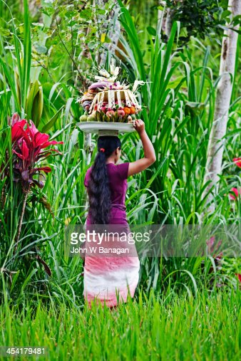 Women going to a Temple, Ubud District, Bali : ストックフォト