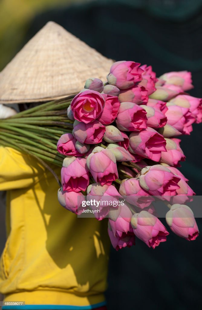 Women Harvesting Lotus flowers