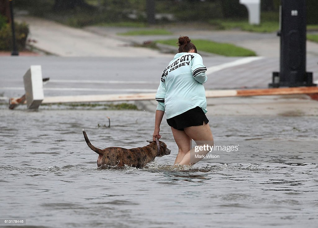 A women helps a dog navigate through Hurricane Matthew's flood waters October 7 2016 on Port Orange Florida Hurricane Matthew passed the area...