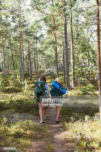 Femme de randonnée dans la forêt de pair