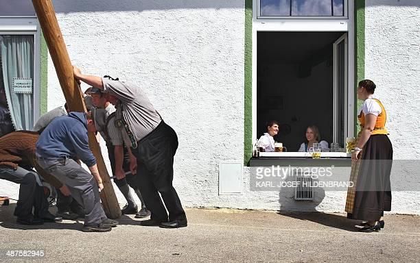 Women look on as men in traditional Bavarian dress erect a maypole on May 1 2014 in Grossweil near GarmischPartenkirchen southern Germany The raising...
