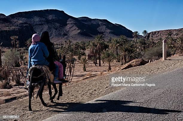Women on a donkey walking on the road