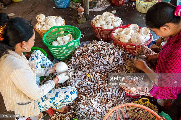 Women peal the skin off fresh coconuts which will be later crushed for milk or oil at a coconut factory outside of Ben Tre in the Mekong Delta in...