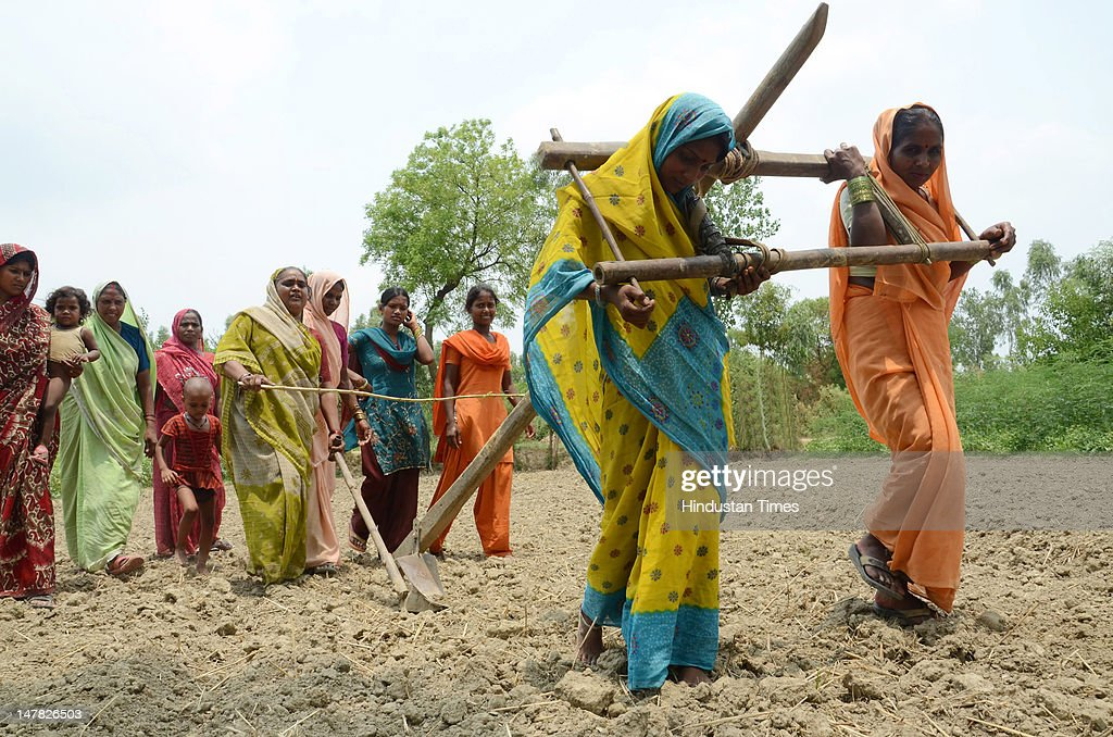 Women ploughing the dry fields as part of 'Har Padoury' Ritual to please the rain god at Benipur village on July 3, 2012 in Bareily, India. Scant rainfall in the region of Eastern Uttar Pradesh has left farmers worried about their paddy crops which heavily depend on Monssons.
