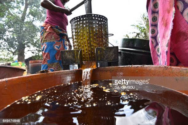 Women press the pulp of the fruit of oil palms to make palm oil at an artisinal workshop on March 7 2017 in Divo Ivory Coast is the world's leading...