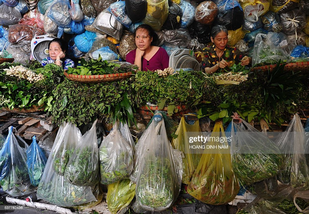 Women sell medicinal herbs and plants inside a local market in Hanoi on June 3, 2016. Many Vietnamese, especially those living in the countryside, still use medicinal herbs and plants they can easily find in fields or gardens to cure simple diseases. / AFP / HOANG