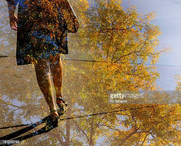 FALL23 A women walks along a sidewalk in downtown Denver in a double exposure with a fall tree RJ Sangosti/ The Denver Post