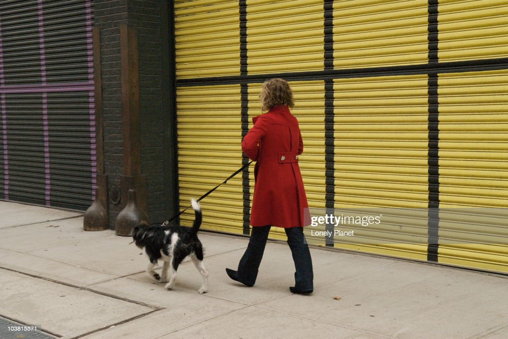 Women walks her dog in front of Matthew Marks Galleries, Chelsea. : Stock Photo