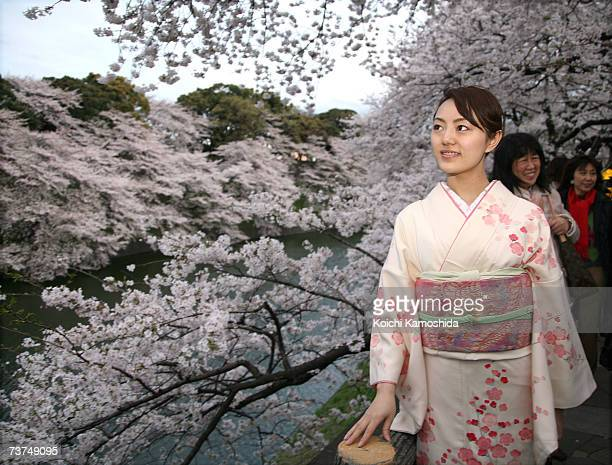 A women walks under the cherry blossoms in full bloom at Chidorigafuchi Chiyodaku on March 30 2007 in Tokyo Japan Chidorigafuchi is one of the major...