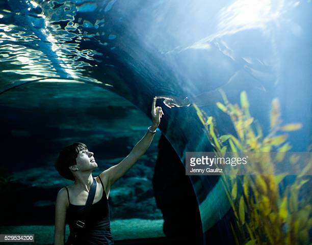 Women watching fish in aquarium