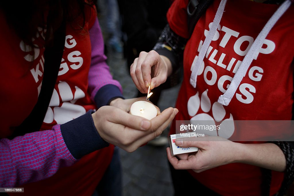 Women wearing T-shirts displaying 'Stop Killing Dogs' lights candles during an animal rights activists' protest in the All Saints' Day on November 1, 2013 in Prague, Czech Republic. Activists were protesting against the Romania law for stray dog culling approved by Romania's constitutional court in September this year. According to estimates 65,000 stray dogs live on the streets of Bucharest.