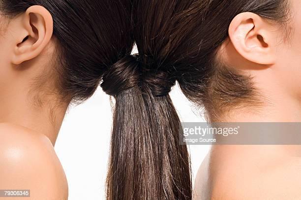 Women with brunette ponytails